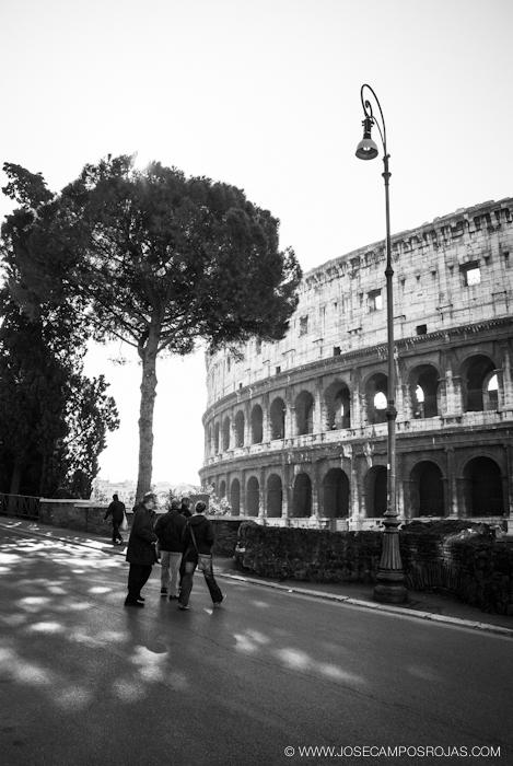 20110309_059_Roma