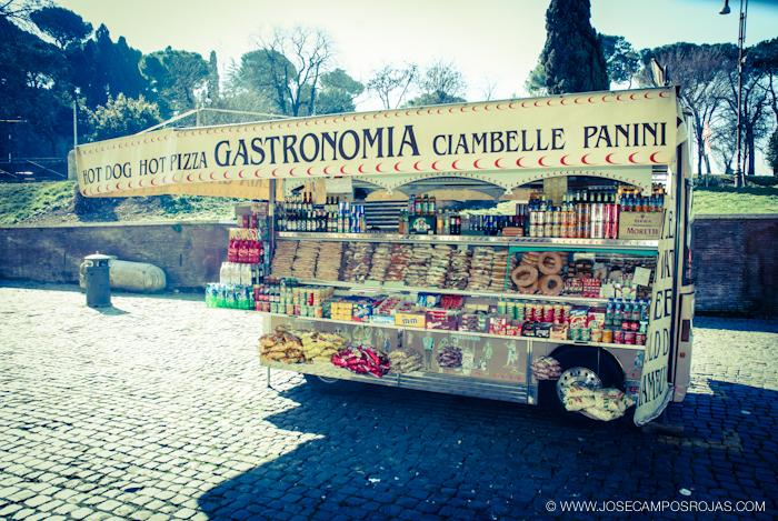 20110309_113_Roma