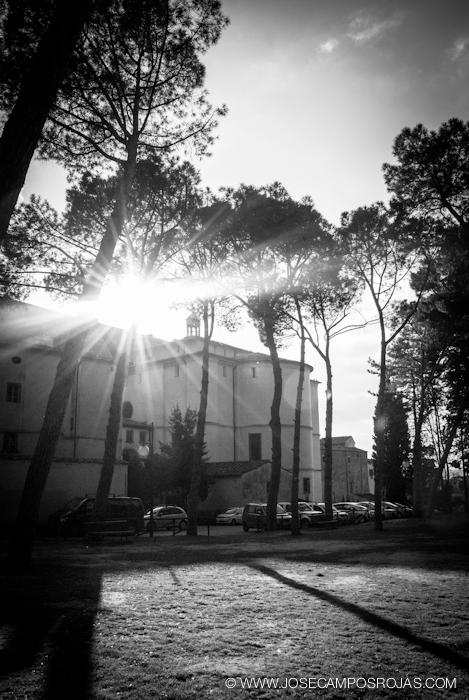 20110311_100_Arezzo