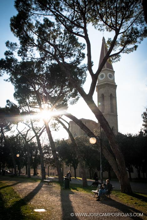 20110311_137_Arezzo